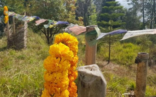 Flower with prayer flags